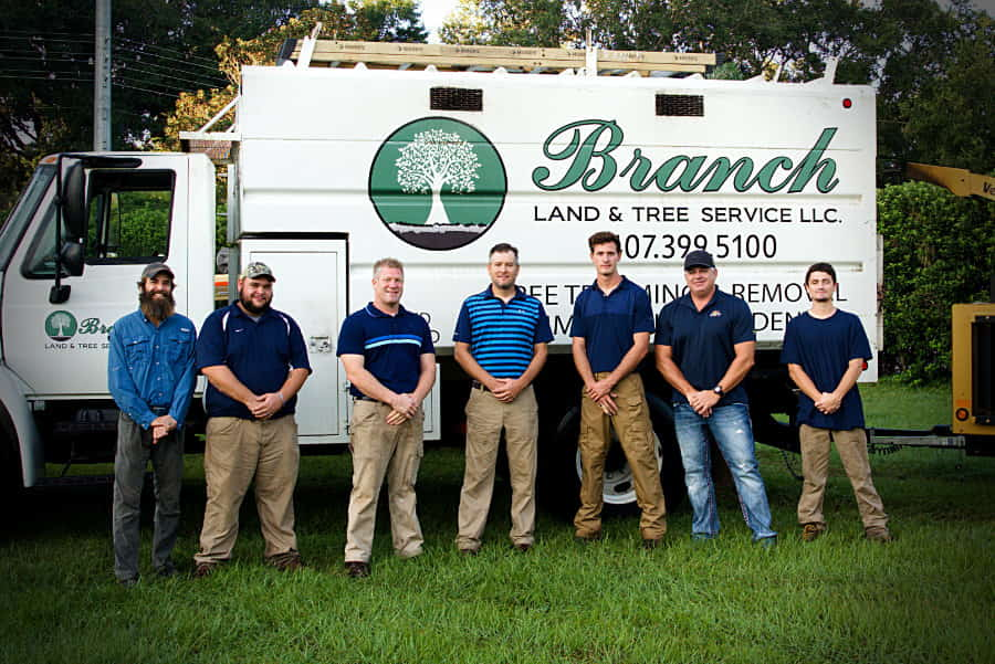 Branch Land and Tree Team
