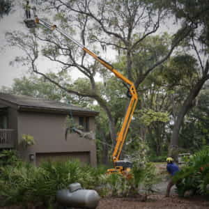 Roping and dropping a limb from over the customer's house - Picture 2 (5-18-2020)