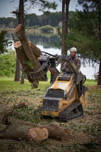 Using the CTX to Move Branch Sections