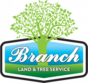 Branch Land and Tree Services